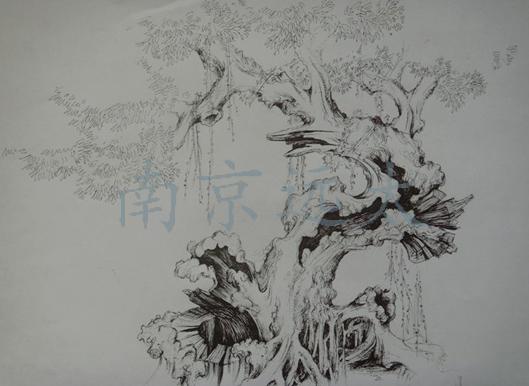 国画 简笔画 手绘 素描 线稿 529_386