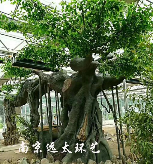 水泥榕树.jpg